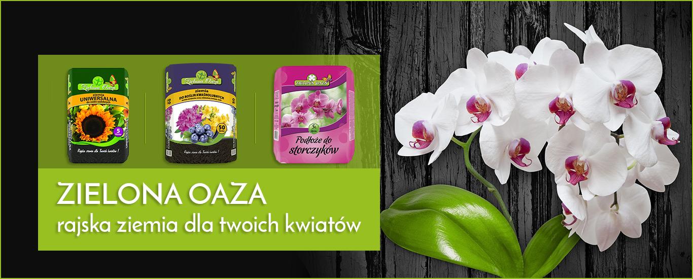 CENTRA OGRODNICZE </br> Zielona Oaza &#8211; sprzedajemy zielone marzenia! SLIDE1