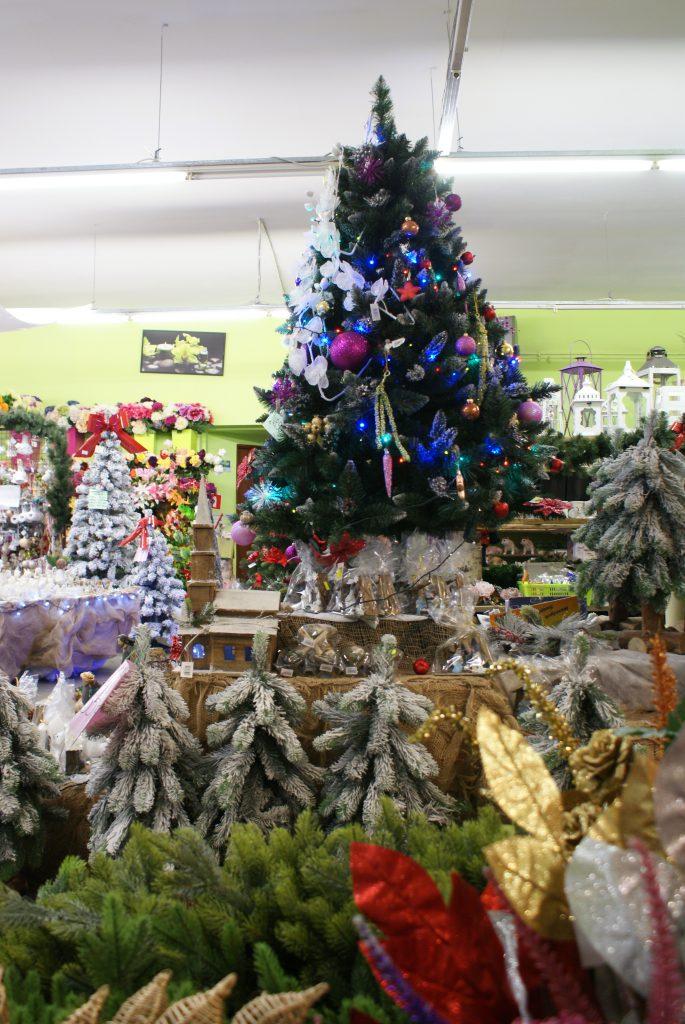 Choinki, ozdoby i dekoracje w Salonach Świątecznych Zielona Oaza