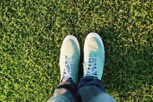 Trawnik z rolki czy wysiewany?