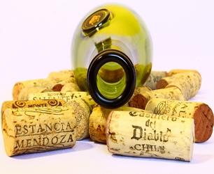 Artykuły winiarskie do wina domowego