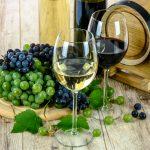 Wino domowe – poradnik dla początkujących